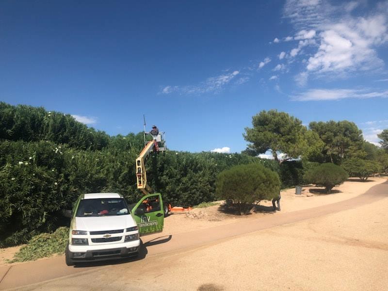 Commercial landscaping service FNV Landscaping